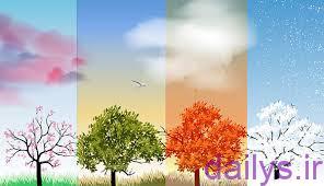 5e106c865e6fe  irnab ir انشا زیبا در مورد توصیف طبیعت