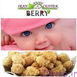 11 4 خواص استفاده توت خشک در بارداری