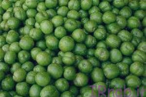 2 bisms.ir 2016 08 31 22 300x200 خواص گوجه سبز با نمک