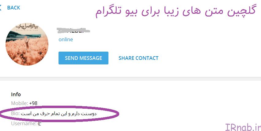irnab.ir 1 متن برای بیو تلگرام | متن زیبا برای بیوگرافی تلگرام