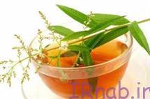 irnab.ir 53 خواص و مضرات به لیمو را بدانید
