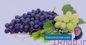irnab.ir 84 300x157 خواص انگور سیاه در بارداری