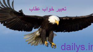 tabirkhab oghab irnab ir تعبیر خواب عقاب