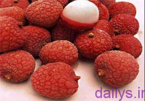 5b73e980bdb5f ajibtarin mivehayedonya irnab ir عجیب ترین میوه های دنیا