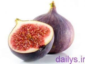 5b73fb669dd37 sher miveha irnab ir شعر میوه ها