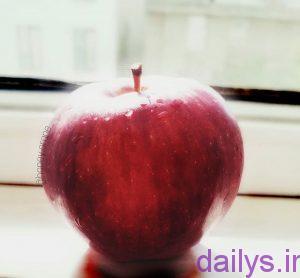 sher miveha irnab ir شعر میوه ها