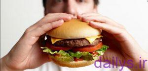 moarefi ghazahayechaghkonande irnab ir معرفی غذاهای چاق کننده