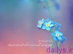 hadisdarbareye nimeshaban irnab ir حدیث درباره ی نیمه شعبان