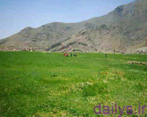 ashnaeebarostaye afje irnab ir آشنایی با روستای افجه