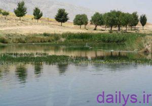 daryacheshalamzar kojast irnab ir دریاچه شلمزار کجاست؟
