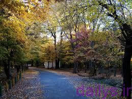 moarefy parkjanghalghargh irnab ir معرفی پارک جنگل قرق