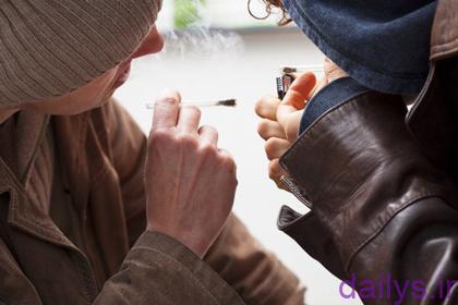 5dbd633734591 mokhadere salvia irnab ir مخدر سالویا،گیاه در دسترس خطرناک با احتمال توهم زایی و اعتیادآوری
