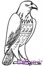 5dc3f49d86a9b آموزش نقاشی عقاب irnab ir آموزش نقاشی عقاب