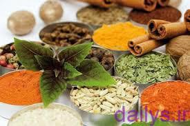 5ddcff25b4561 behtarin dam kardani ha baraye darman sarma khordegi irnab ir بهترین دمکردنی ها برای درمان سرماخوردگی
